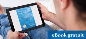 Le livre Un Bouddhisme moderne en ebook gratuit