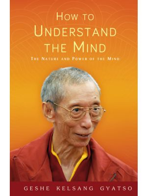 How to Understand the Mind - paperback - front cover