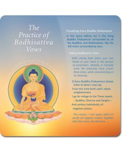 The Practice of Bodhisattva Vows - front