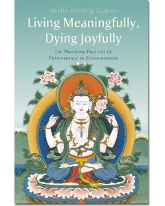 Living Meaningfully, Dying Joyfully - Front Cover