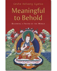 Meaningful to Behold - Hardback