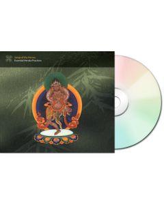 Songs of the Heroes - CD