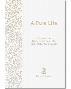 A Pure Life - Booklet