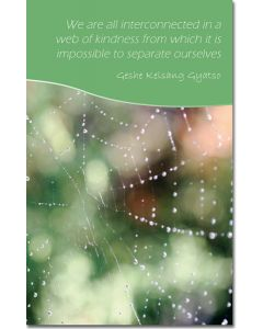 Mini Message Card - Web of Kindness