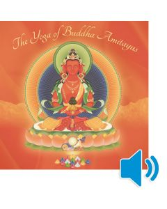 The Yoga of Buddha Amitayus - AUDIO