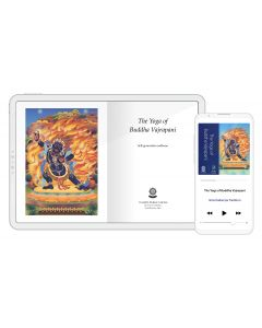 Spring Festival Bundle STANDARD --- Buddha Vajrapani