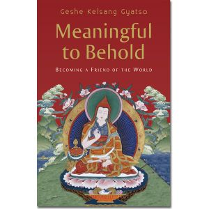 Meaningful to Behold - Hardback