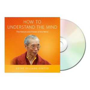How to Understand the Mind - Audiobook CD