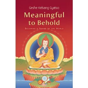 Meaningful to Behold - Paperback