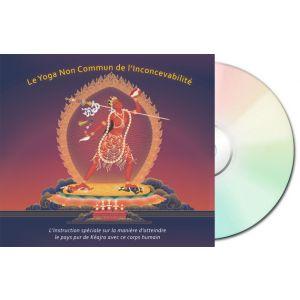 Le Yoga Non Commun de l'Inconcevabilité - CD