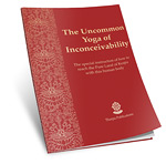 The Uncommon Yoga of Inconceivability